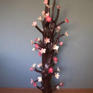 Plumeria / frangipani tree