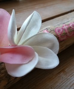 Driftwood plumeria Let's get lost